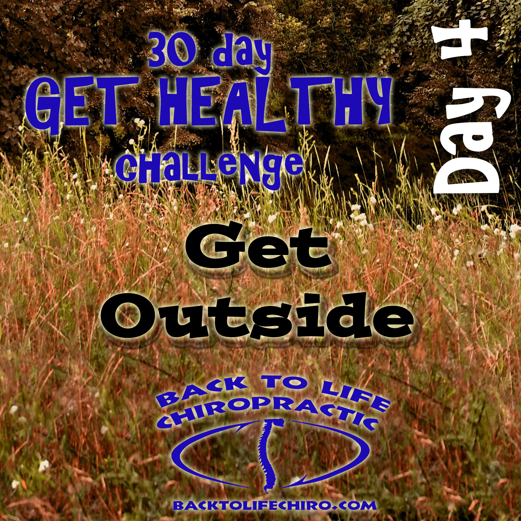 30 Day Get Healthy Challenge, Day 4