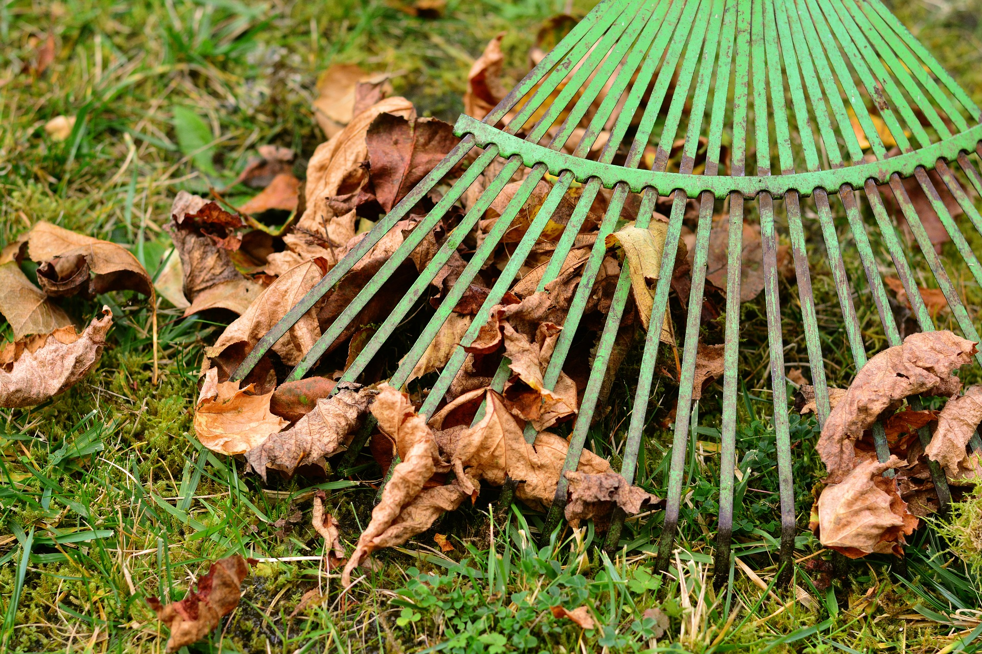 How to Avoid Injury While Raking Leaves