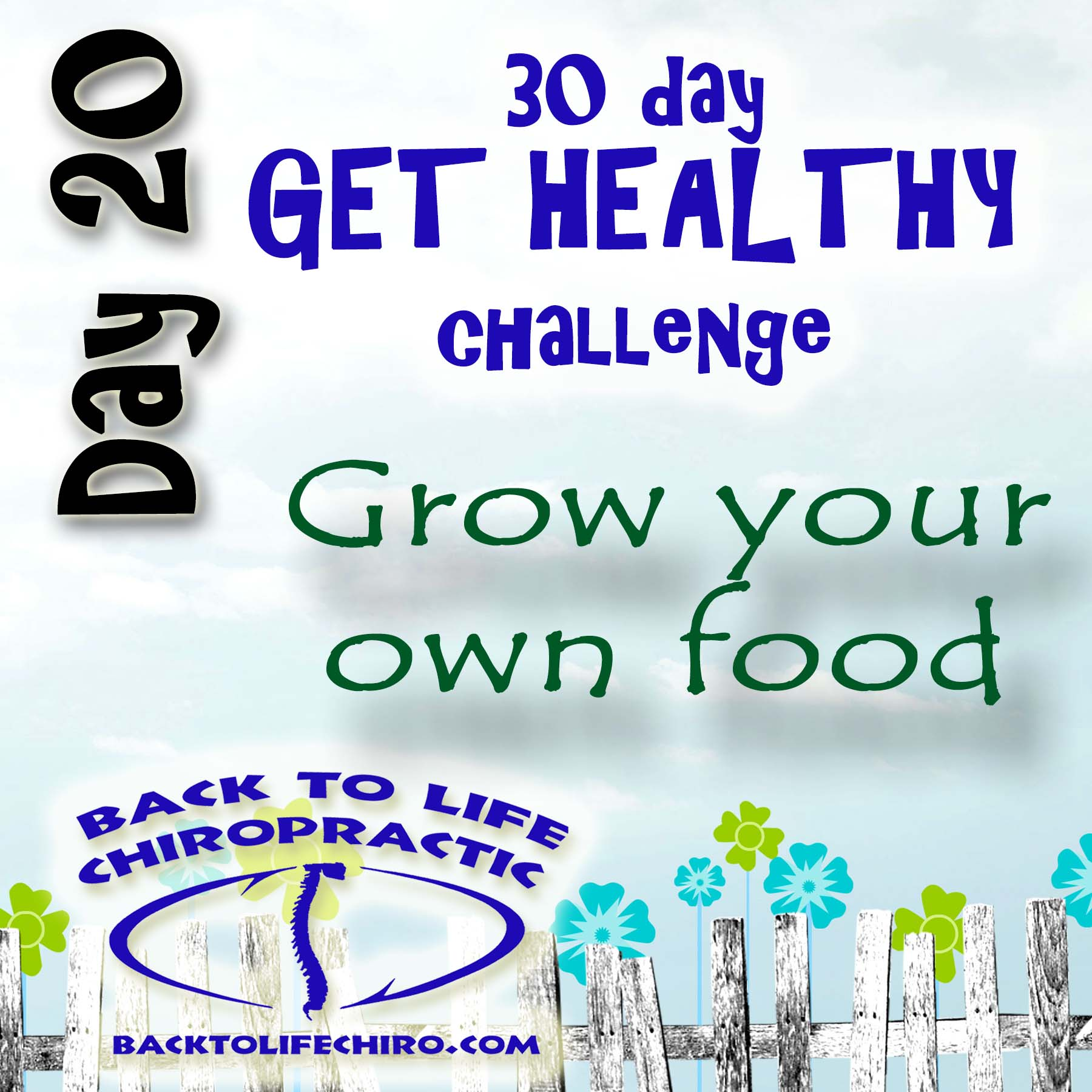 30 Day Get Healthy Challenge, Day 20