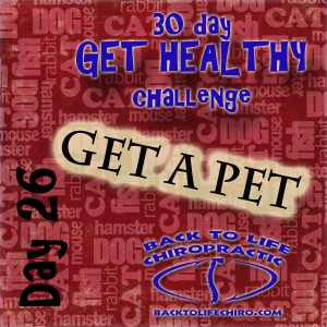 30 Day Get Healthy Challenge, Day 26