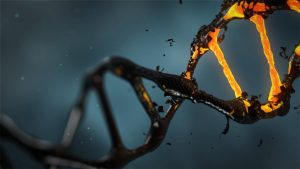 Leveraging Your Genes.  How Your Lifestyle Choices Influence Your Health.